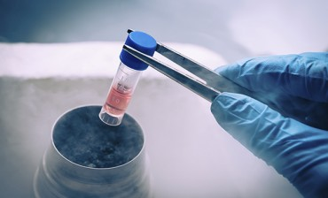 Embryo-freezing-cryopreservation-new